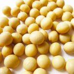 犬が大豆を食べるのは大丈夫?アレルギーや効能・適量についても