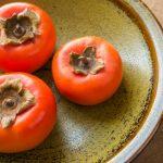 犬が柿を食べるのは大丈夫?適量は?アレルギーや種の処理など注意点も